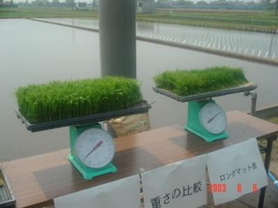 تحقیق كاشت گیاهان بدون استفاده از خاک (هیدرو پونیک)